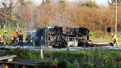 Carnavalisten in rouw na overlijden van 33-jarige trucker uit Hofstade