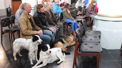Hondenwijding bij Sint-Hubertusviering