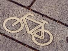 Man stal fiets van man met beperking in Overloon: week celstraf