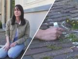 Mathilde zet stoepplantjes in de schijnwerpers