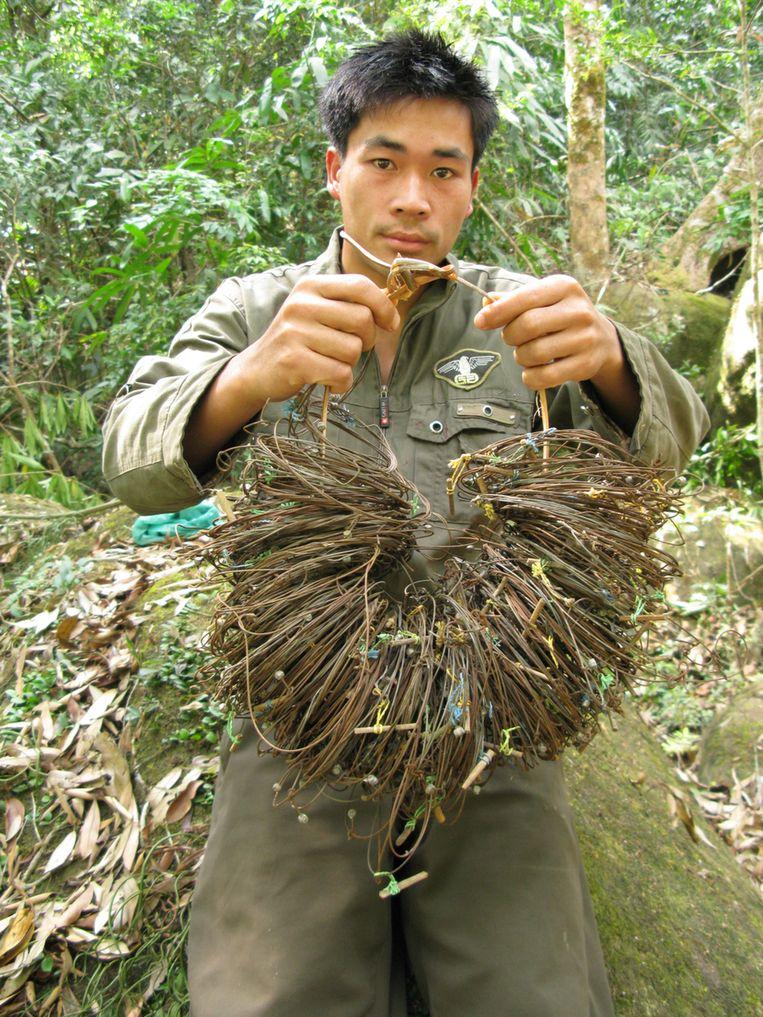 Een valstrik waar saola's vaak in vast komen te zitten in de bossen in Vietnam. Beeld null