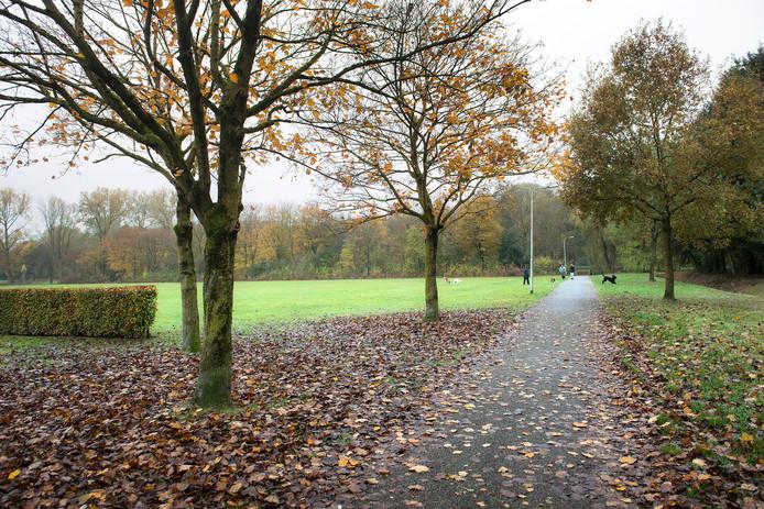 Wilco Veldhorst vindt Stadspark Staddijk in Dukenburg een prachtplek.