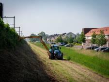 Vogelnesten, insecten en bloemen vernietigd langs het Arnhems spoor: ProRail legt maaiwerk stil na buurtprotest