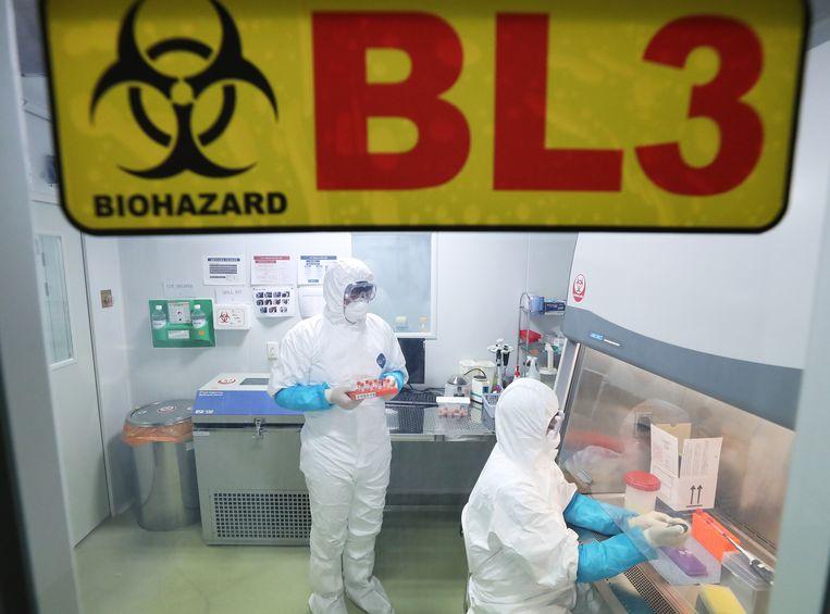 Onderzoek naar het mysterieuze virus. Beeld EPA