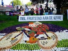 Regio sponsort Fruitcorso met 35.000 euro