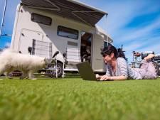 Run op campers in coronatijd: 'Goed alternatief voor vliegvakanties'