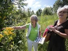 Natuurtuin Diddersgoed, een verborgen stukje Veenendaalse natuur