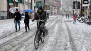 Antwerpen gooit 1.200 ton zout en 100.000 liter pekel in de strijd om straten ijsvrij te houden