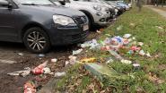 AWV pakt sluikstortprobleem carpoolparking A12 aan