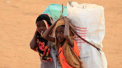 Klimaatverandering en oorlog dwingen Noord-Afrikaanse ouders om dochters te ruilen voor vee