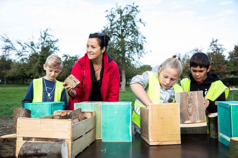 Op 'Bilzen, de boom in' maken kinderen samen zo'n 300 nestkastjes voor vogels die gedijen in de hoogstambomen op Alden Biesen.