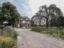 Kap van oude beuk in Duiven: 'Het mooie van Welleveld komt nooit meer terug'