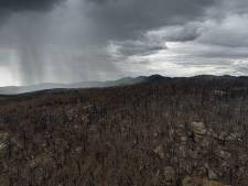 Tempêtes de poussière et averses de grêle sur l'Australie sinistrée par les feux