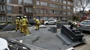 FOTOREEKS. Storm houdt lelijk huis in provincie Antwerpen. Stad roept op om niét te bellen voor schade op privédomein