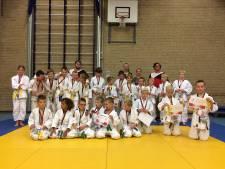 Speelse opmaat in Losser naar judocompetitie