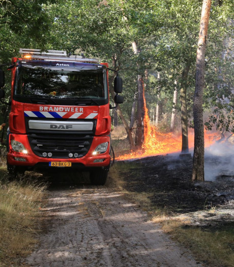 Grote brand in BZOB-bos Helmond onder controle