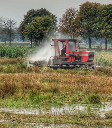Maaien in Rijssens natuurgebied Overtoom-Middelveen om bodem schraal te houden voor flora en fauna