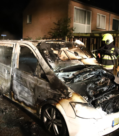Twee auto's in brand in Culemborg