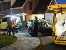 Viaanse zwaargewond na botsing met auto tegen boom