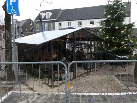 Dranghekken voor kindje Jezus in Sint-Michielsgestel
