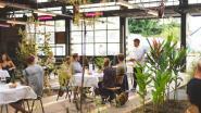 Stelplaats pakt uit met restaurantconcept: drie culinaire gangen voor maximum 20 euro