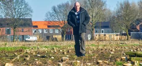 Raadslid en inwoner: 'Bomenkap in Veghels Buiten gaat echt te ver'