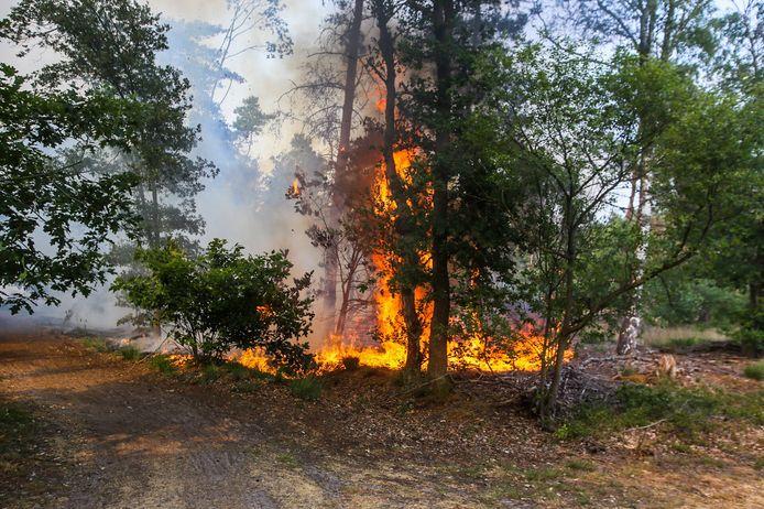 De brand nabij Helmond was snel geblust.