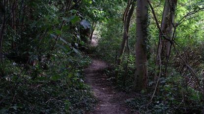 Onbekende wil meisje (16) in bosjes sleuren