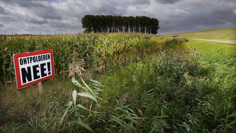Een protestbord tegen ontpolderen in de Nederlandse Hedwigepolder in Zeeuws-Vlaanderen aan de Westerschelde op de grens met de Belgische Prosperpolder. Beeld null
