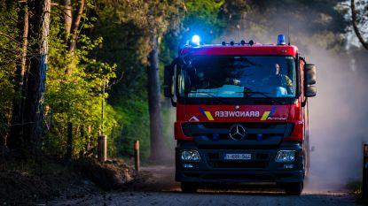 Grobbendonkse bossen afgesloten omwille van het extreem hoge risico op brandgevaar
