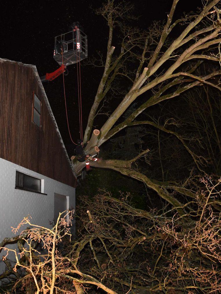 In de Dalilalaan in Boortmeerbeek kwam eveneens een boom op een huis terecht. De brandweer kwam hem in stukken zagen om hem makkelijk te kunnen verwijderen.