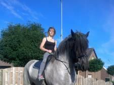 Paard Jim werd toegetakeld, tot de dood aan toe: 'Het enige wat ik nog heb, is zijn staart'