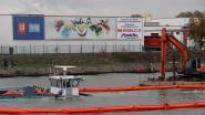 Antwerps kraantjeswater stinkt door te veel algen (maar het is wel nog drinkbaar)
