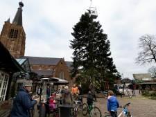 Megakerstboom op marktplein Leende: 'Het transport is de grootste uitdaging'