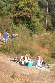 Nazomer in Brabant: drukte op terrassen en in natuurgebieden