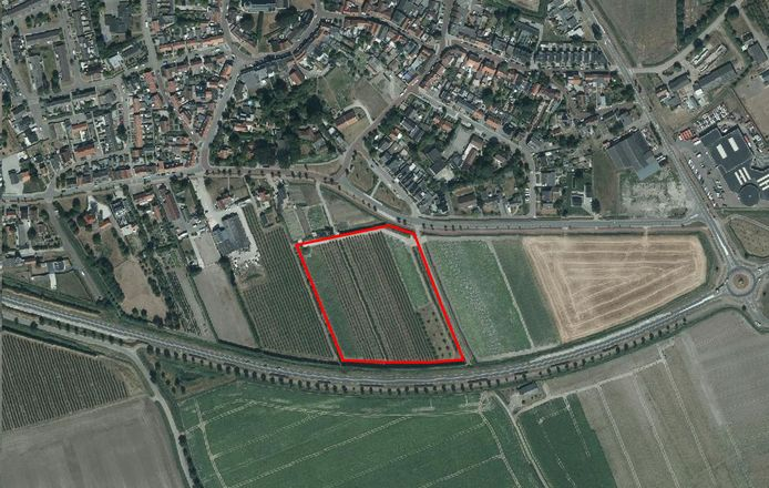 Roodomlijnd is de locatie van de bestaande boomgaard, ingeklemd tussen de Postweg (onder) en het Zuidplantsoen in de kern.