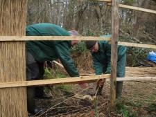 Meer onderhoud vergt voortaan wekelijkse inzet van vrijwilligers in Grote Otterskooi in Dwarsgracht