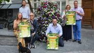 Handelaars zorgen voor animatie en koopjes in binnenstad tijdens 'Ninove zomert'-topdagen