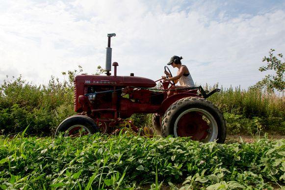 Een landbouwster aan het werk op haar boerderij in Amagansett, New York.