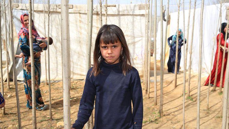 Syrische vluchtelingen in het kamp in de Bekavallei. Beeld anp