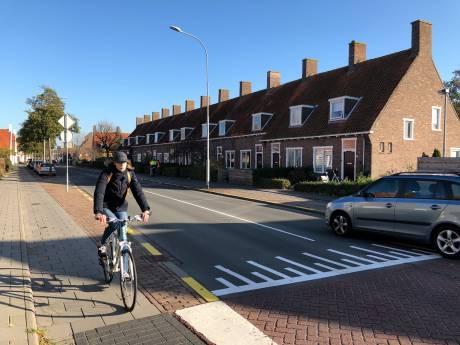 Fietsersbond: 'Middelburg echte fietsstad? Maak auto dan gast'