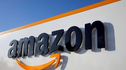 Eerste winstdaling in tijden bij Amazon