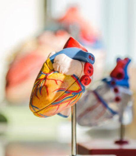Antwerpenaar schat eigen risico op hart- en vaatziekten te laag in