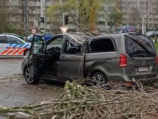 Boom plet rijdende auto in Dordrecht: 'Mijn neefje schreeuwde nog dat ik gas moest geven'