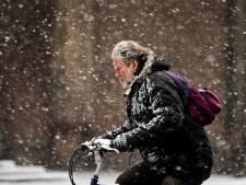 Sneeuw! Oost-Nederland onder wit laagje, maar pas op voor gladheid