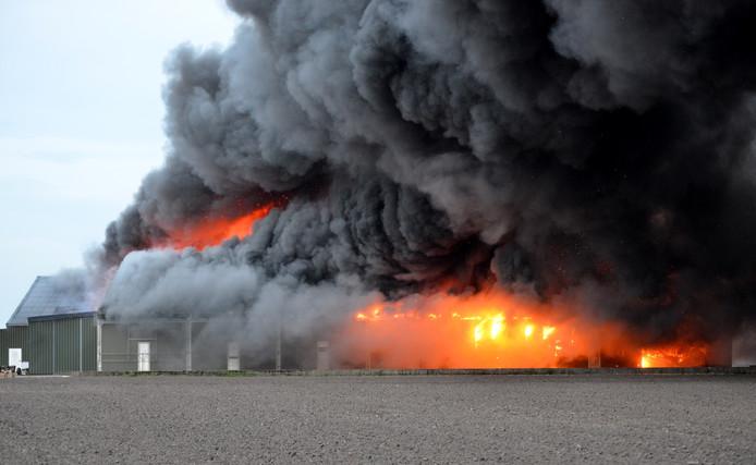 Enorme rookontwikkeling bij een grote brand in een champignonkwekerij in Bavel.