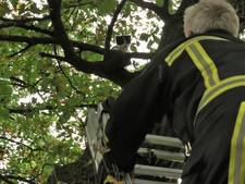 Schooljeugd juicht voor brandweerman in Tubbergen na reddingsactie