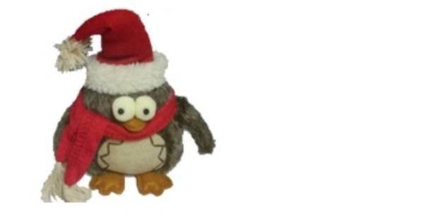 Intratuin waarschuwt voor uil met kerstmuts binnenland for Intratuin wijchen