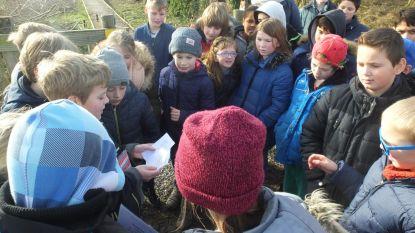 Scholen ontmoeten elkaar op poëziewandeling