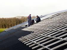 'Staldaken Krimpenerwaard zeer geschikt voor zonnepanelen', aldus coörporatie Waardstroom